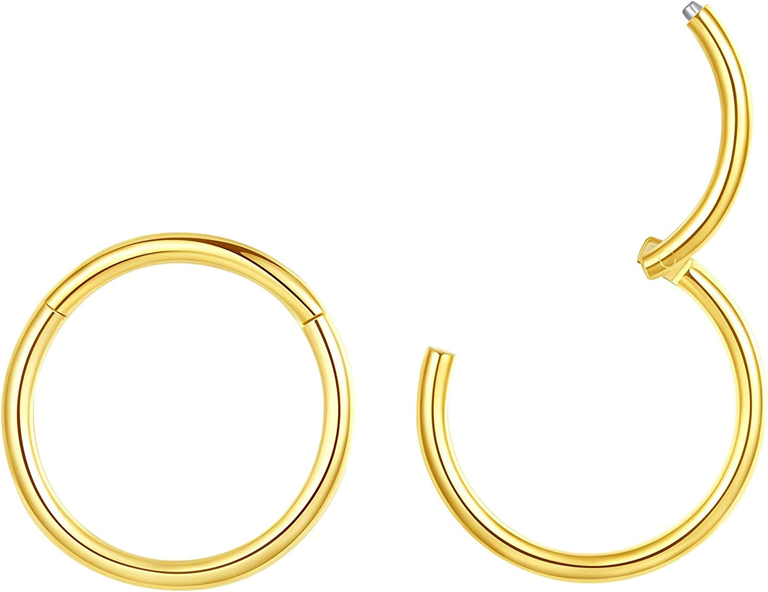 Nose Rings 2pcs G23 Titanium Piercing Jewelry Hinged Segment Ring Body Piercing Nose Hoop Lip Rings Nose Helix Cartilage Rook Earrings, 5 Colors