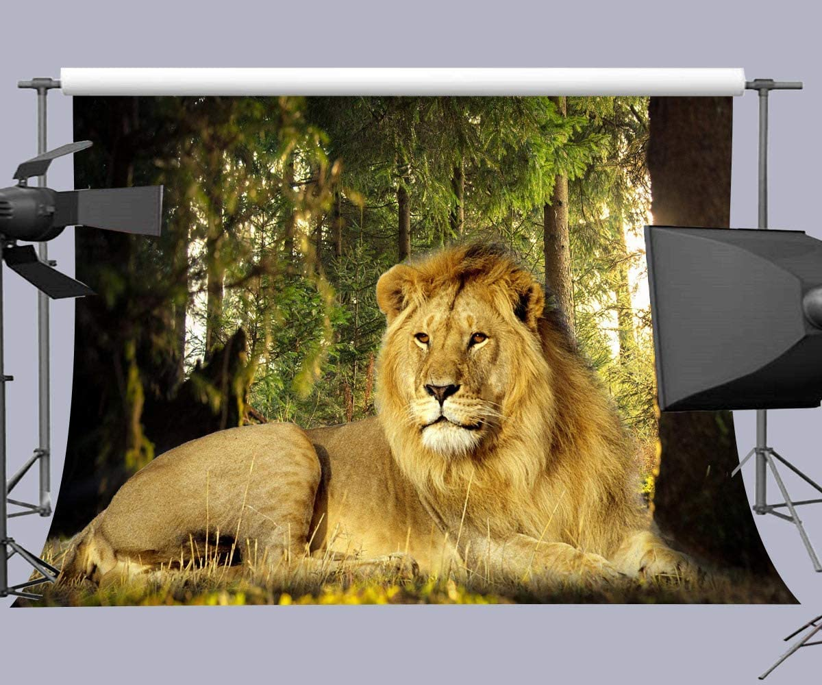 10x6.5ft Lion Backdrop Photography Props Photo Background Studio Banner Room Wall Murals LYFU470