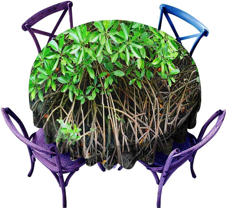 AndyTours Fashions Table Cloth,Mangrove Tree Rhizophora mucronata,High-end Durable Creative Home,60 INCH