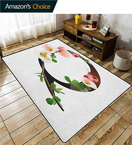 Letter Q Paisley Rug Pads Q Letter Surrounded With Pinkish Quince Flowers And Buds Abstract Spring Inspired Durable Rugs Living Dinning Office Rooms Bedrrom Hallway Carpet 5 X 8 Multicolor