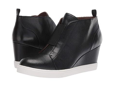 5ed3a9ffa4d7 LINEA Paolo Felicia Wedge Sneaker at Zappos.com