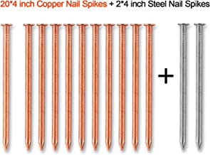 4 Inch Copper Nails for Killing Trees, 20 Pieces 4 Inch Solid Copper Nail Spikes with 2 Pieces 4 Inch Large Steel Nail Spikes for Killing Tree, Removing Stumps & Roots