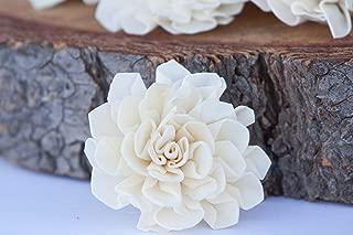 Bloem, Inc. Dahlia Sola Flowers, 2