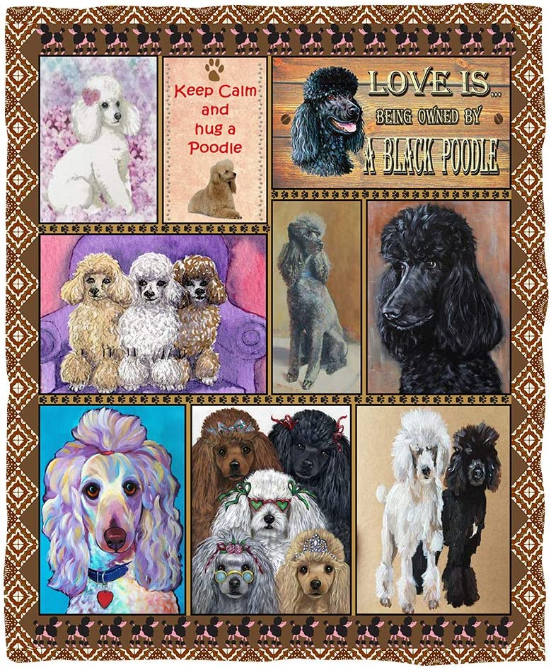 Puurbol Poodle Dog セール 登場から人気沸騰 Blanket Throws Gift 高級な Fleece