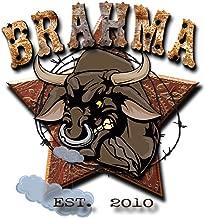 Titan Brahma 13mm Single Prong Powerlifting Belt - IPF Legal (Red, large)