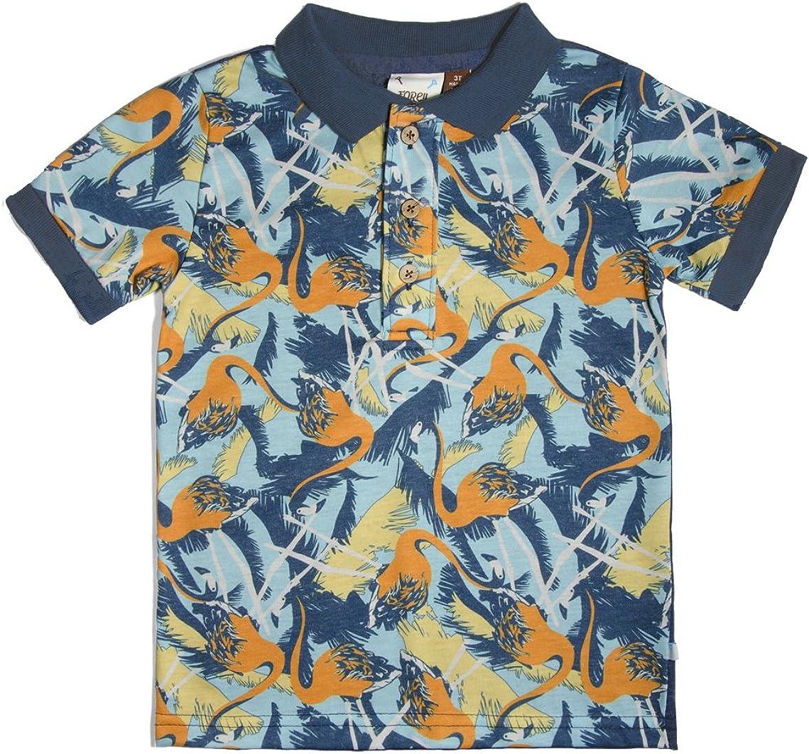 Fore!! Axel & Hudson Big Boys' Flamingo Polo Shirt (c)