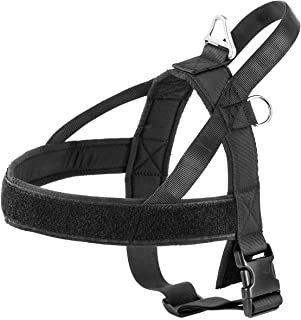 easy walk harness always attaches