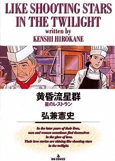 黄昏流星群(4) (ビッグコミックス)