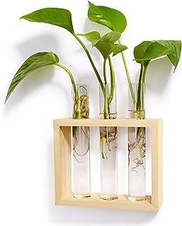 گیلاس کاشت گیاهان Mkono گلدان مدرن با گلدان گلدان با گیاهان چوبی گیلاس، گیلاس هیدروپونیک، دکوراسیون داخلی خانه