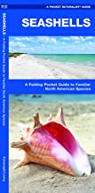 Seashells: A Folding Pocket Guide to Familiar North American Species (Wildlife and Nature Identification)
