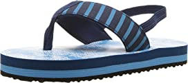 Sea Sharks Flip-Flop (Toddler/Little Kid)