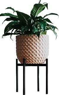 ceramic orchid pots australia