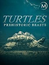 Turtles: Prehistoric Beasts
