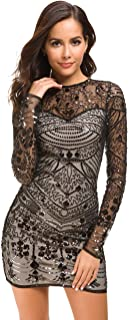 Women's Mesh Sequin Embroidery Slim Long Sleeve Sexy Costume Party Club Dress