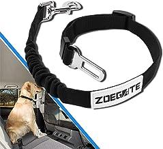 Suchergebnis Auf Für Hundesicherung Auto