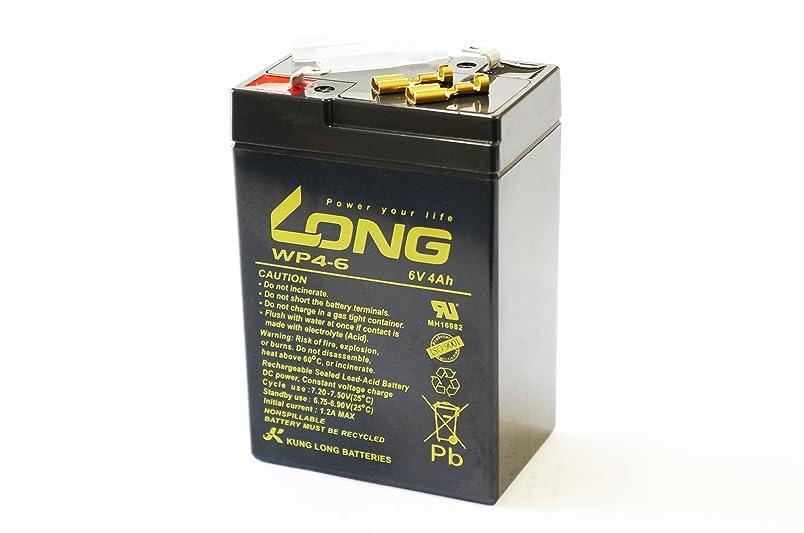 結論活発構造的LONG 6V 4Ah 高性能 シールドバッテリー WP4-6 WP4-6