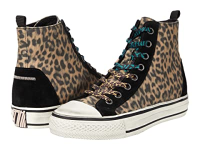 ASH Genial Punk Cheetah (Beige/Black) Women