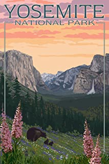 Yosemite National Park, California - Bear and Cubs with Flowers (9x12 Art Print, Wall Decor Travel Poster)
