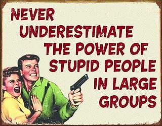 Desperate Enterprises Ephemera - Stupid People Tin Sign, 16