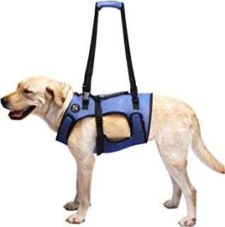 COODEO Dog Lift Harness, Full Body Support & Recovery Sling, Pet Rehabilitation Lifts Vest Adjustable Breathable Straps for Old, Disabled, Joint Injuries, Arthritis, Paralysis Dogs Walk