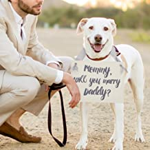 Mommy Will You Marry Daddy Sign   Wedding Proposal With Kids Engagement Banner for Son Daughter or Dog   Gray & Silver with Ivory Paper