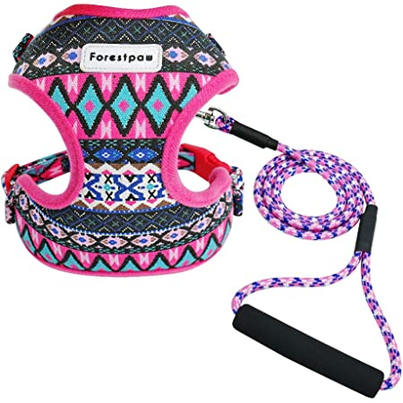 Forestpaw Multi-Colored Stylish Dog Walking Vest Harness and Leash Set- Soft Mesh Padded No Pull Dog Harness for Yorkies,Chihuahua,Poodles,Terriers,Beagles Small Medium Puppy Dogs