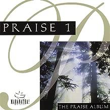 Praise 1 - The Praise Album