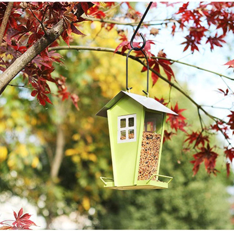 XUANQI Trust Wild Bird Feeder Hanging Decoration Garden Yard B Great interest Outside