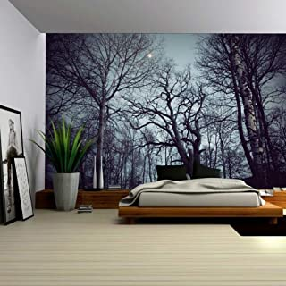 Mystic Forest Farm House Decor Tapestry Dark Forest Scenery with Sunbeams Woodland Landscape Wall Hanging for Bedroom Living Room Dorm Home Art (Black, 78Wx59L)