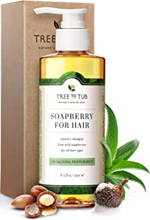 Clarifying Shampoo for Sensitive Skin by Tree To Tub - pH 5.5 Balanced and Gentle for All Hair Types, with Organic Argan Oil, Wild Soapberries, Natural Peppermint Oil 8.5 oz