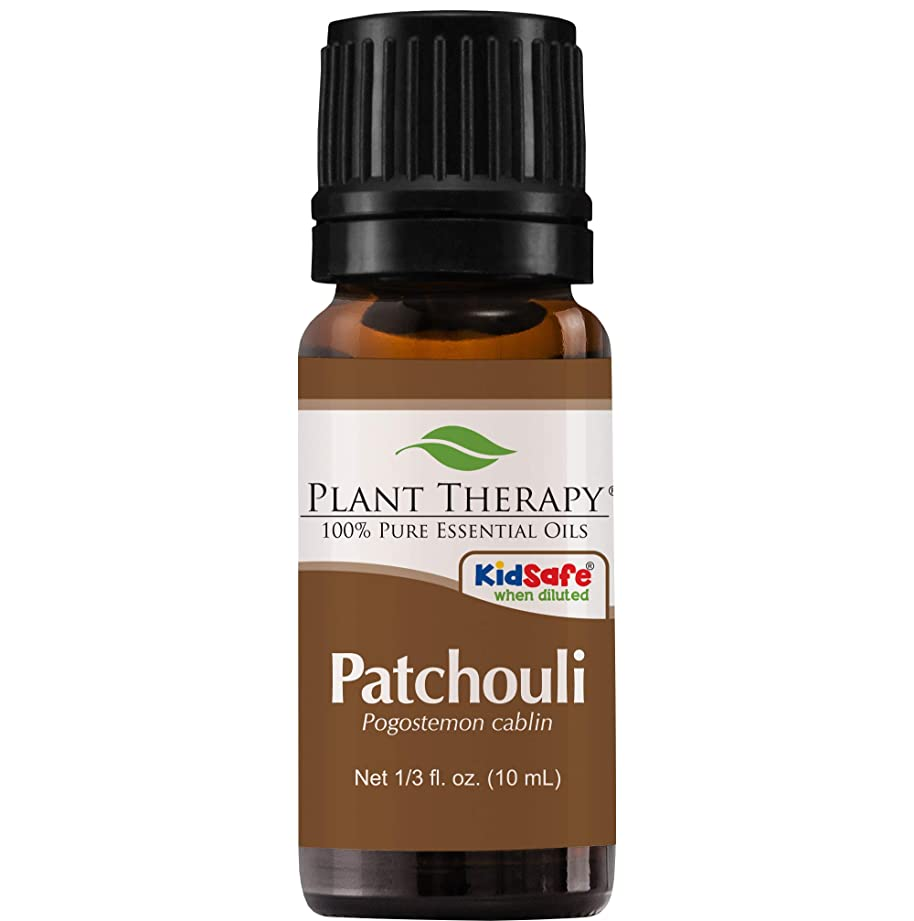故国高尚なピラミッドPlant Therapy Essential Oils (プラントセラピー エッセンシャルオイル) パチョリ エッセンシャルオイル