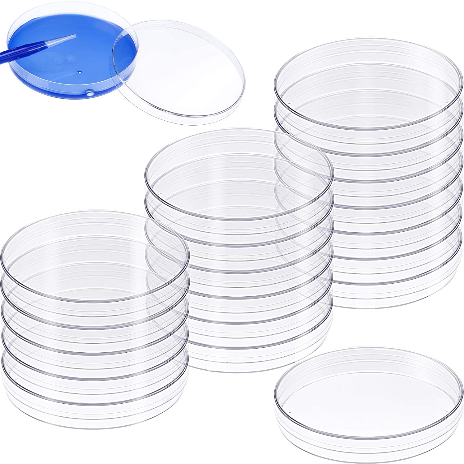 20 Pieces Fashion 90 x 15mm Plastic Clear Lid Projects Dishes Deluxe with Petri