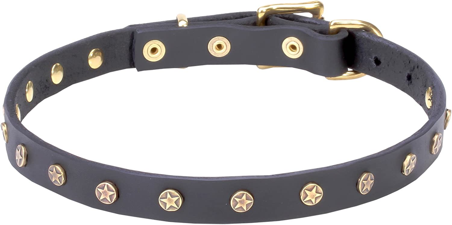 34 inch Black Leather Dog Collar with Brass Studs   Stars   3 4 inch (20 mm) wide