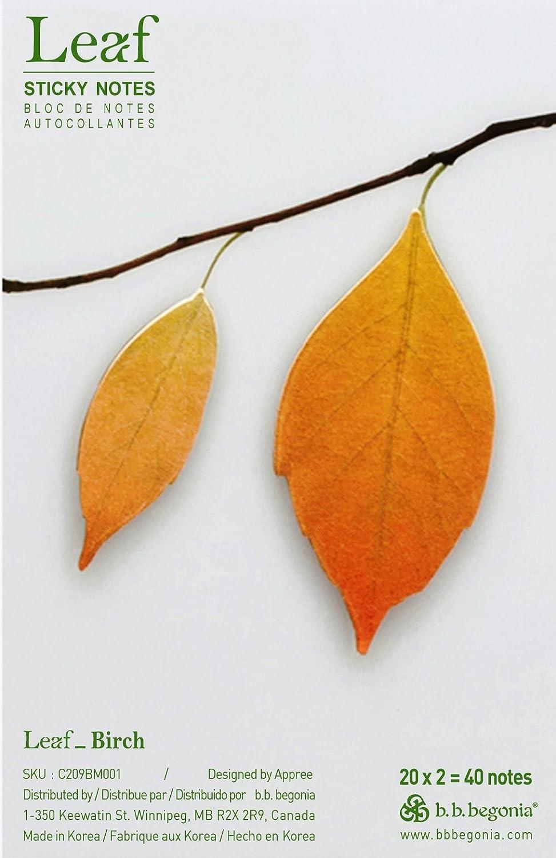 B.B. Begonia Leaf Birke Sticky Notes, braun, braun, braun, mittel (c209bm001) B00APBITSE | Moderate Kosten  | Modern Und Elegant In Der Mode  | Online Outlet Store  8fd857