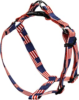 dog harness infomercial