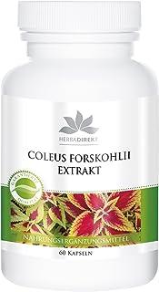 Forskolina 10mg – Extracto de Coleus Forskohlii – 60 cápsulas