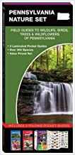 Pennsylvania Nature Set: Field Guides to Wildlife, Birds, Trees & Wildflowers of Pennsylvania