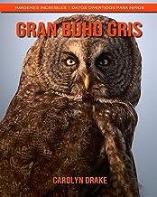 Gran búho gris: Imágenes increíbles y datos divertidos para niños (Spanish Edition)