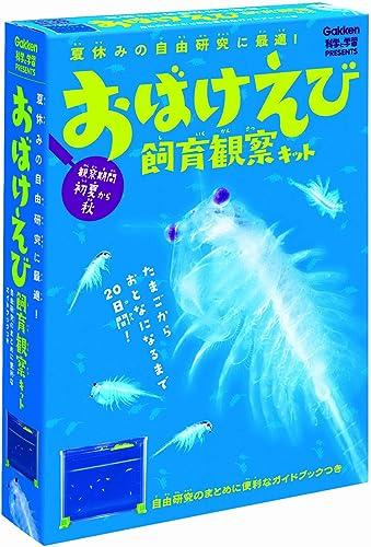Ghost shrimp breeding observation kit (japan import)