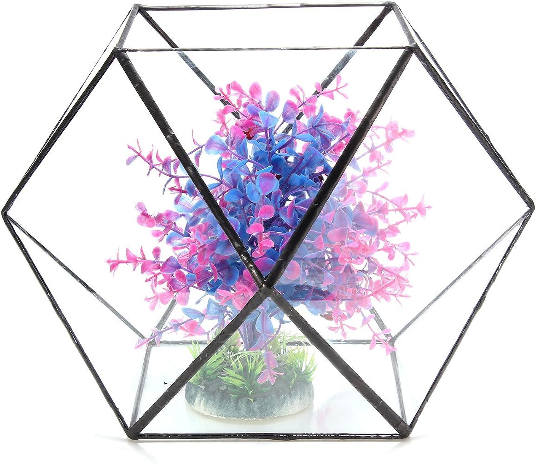 Faway Serre Bouteille en Verre Polygon Serre Terrarium en Verre DIY Micro Paysage Plantes artificielles Pot de Fleurs