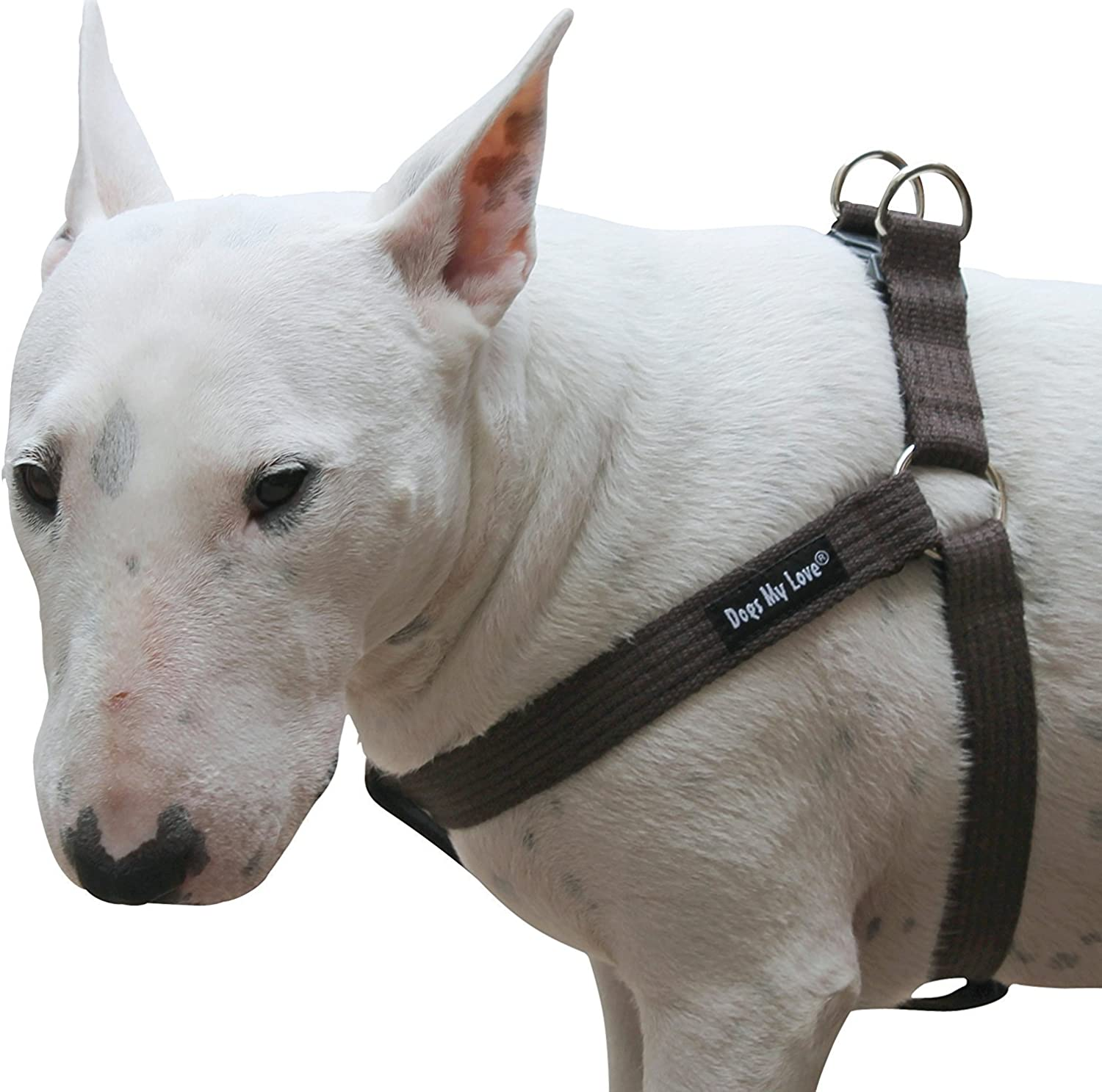 Cotton Web Adjustable Dog Stepin Harness 4 Sizes Brown (Large  17 23  Chest; 1  Wide)