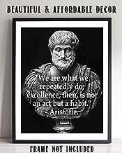 aristotle quote excellence habit