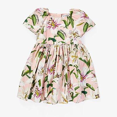 Dolce & Gabbana Kids Lily Print Poplin Dress (Infant) (Gigli Rosa) Girl
