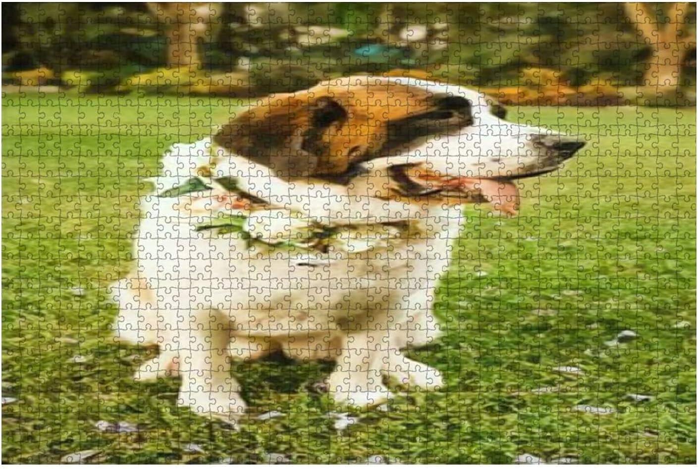 1000 Pieces-Saint Bernard Dog Ready 5% OFF Ceremony Wedding for Wooden