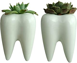 Set of 2 Teeth Ceramic Planters, Succulent Planter Pots, Dentist Gifts, Teeth Flower Plant Containers, Tooth Planter, Tooth Fairy Planters