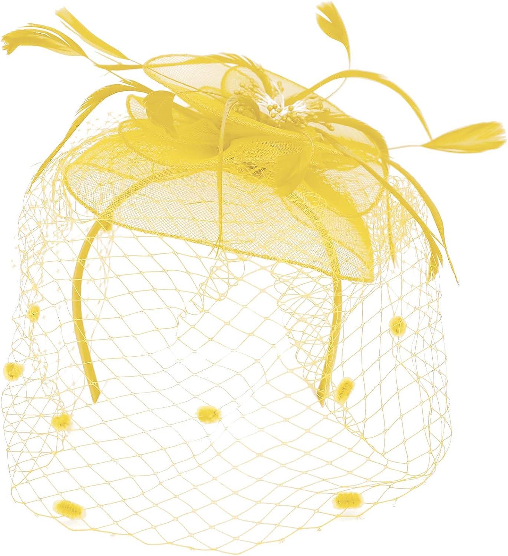 Trendy Apparel Shop Mesh Flower Feathered Swiss Dot Pom Net Fascinator