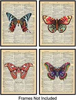 Vintage Butterfly Dictionary Art Prints - Upcycled Wall Art Poster Set - Chic Rustic Home Decor for Bedrooms, Living Rooms, Girls Room, Nursery - Great Gift for Women, Steampunk - 8x10 Photo- Unframed