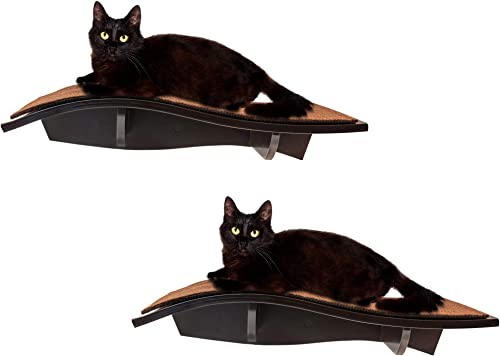 high quality Arf Pets Cat Perch, outlet sale Wall-Mounted Wooden Shelf For Your Pet, Attractive Curved Wood Ledge Encourages Natural Activity & Fun Exercise For online sale Your Kitty,Sturdy Feline Furniture, Holds Up To 44 Lbs. 2 Pack outlet online sale