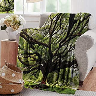 PearlRolan Summer Blanket,Nature,The Largest Monkey Pod Tree in Thailand Eastern Green Big Branches Growth Eco Photo,Green Brown,Lightweight Breathable Flannel Fabric,Machine Washable 60