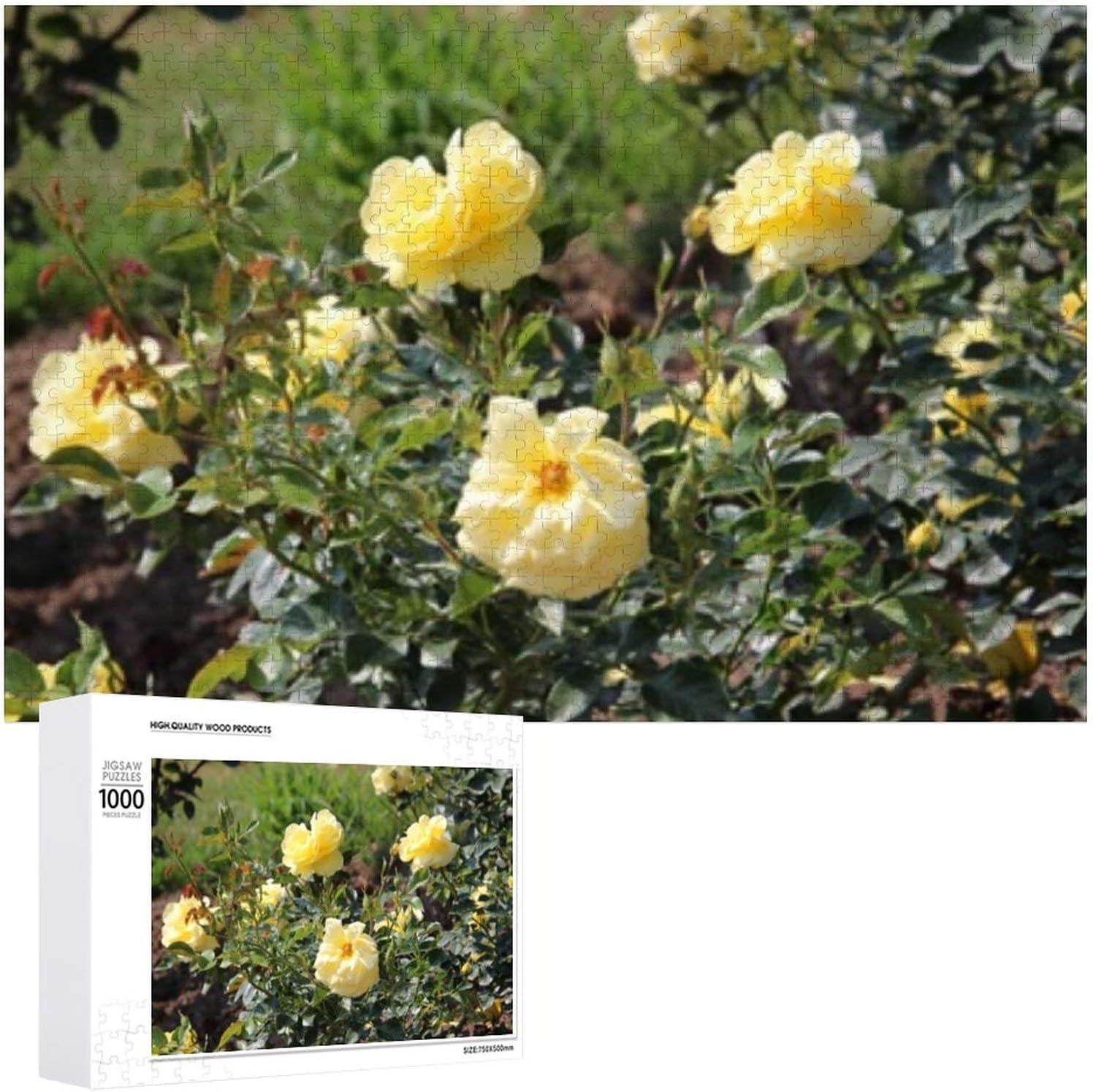 Ranking TOP4 Flowers Garden Hokkaido Japan - 1000 mart Adults Jigsaw Puzzles for